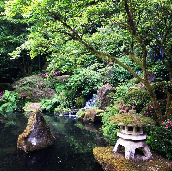 A small waterfall and pool in the Japanese garden.