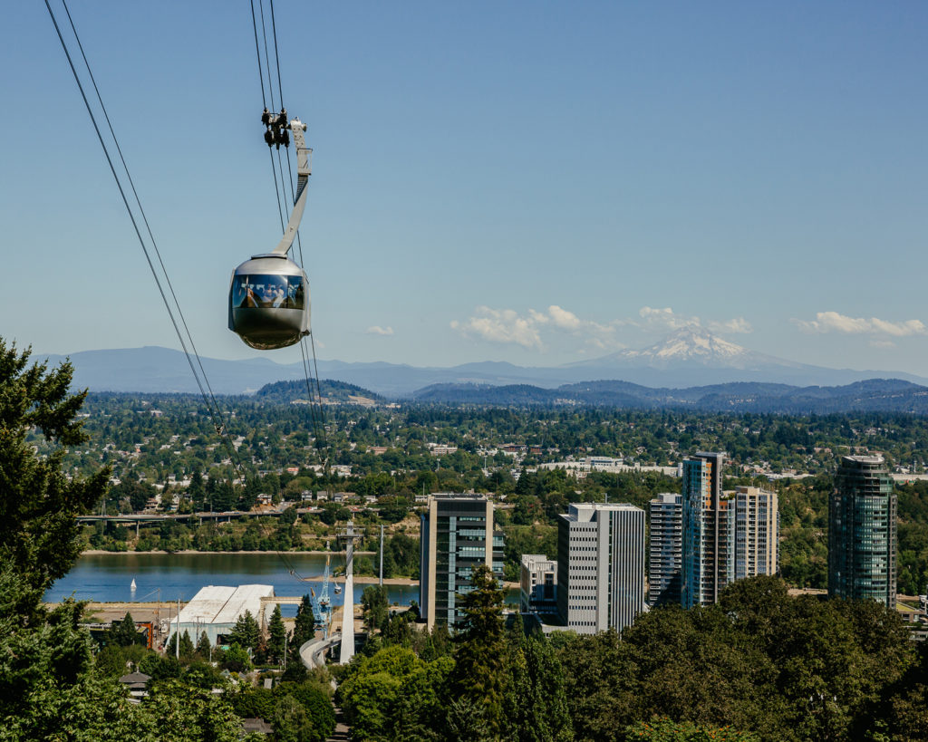 An aerial tram pod travels on cables above trees with skyscrapers, a river and a mountain in the background