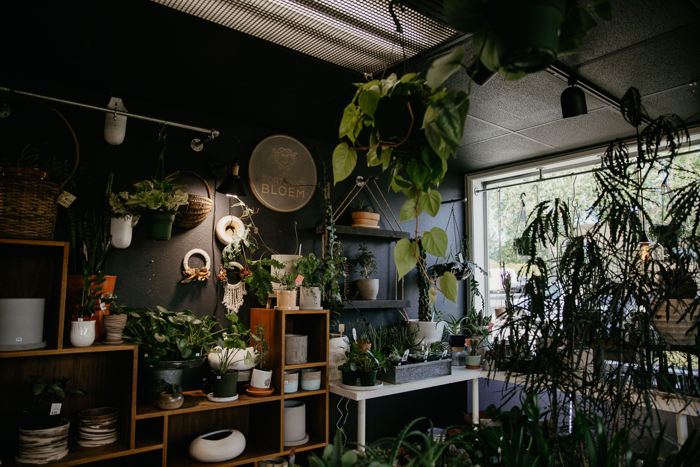 the interior of Portland Bloem, a dark room filled with plants