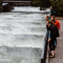 Three people observe a fish ladder