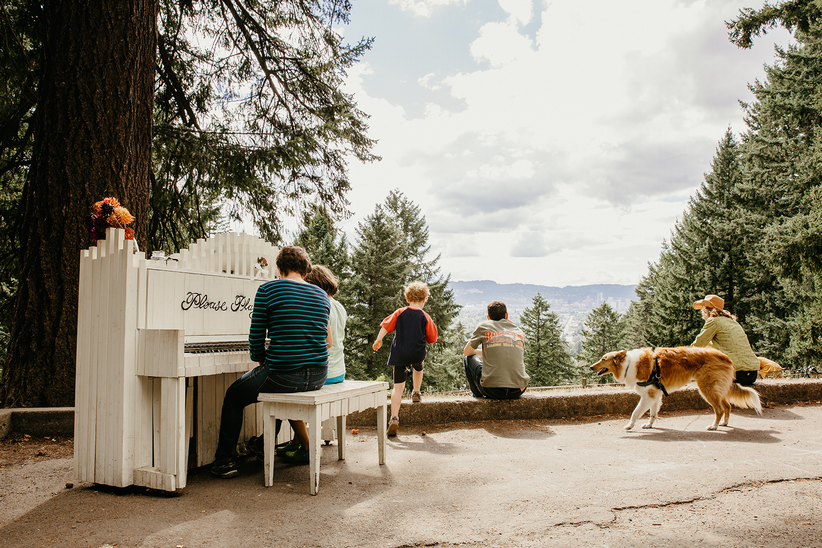 family at mount tabor park plays piano and looks at view with dogs