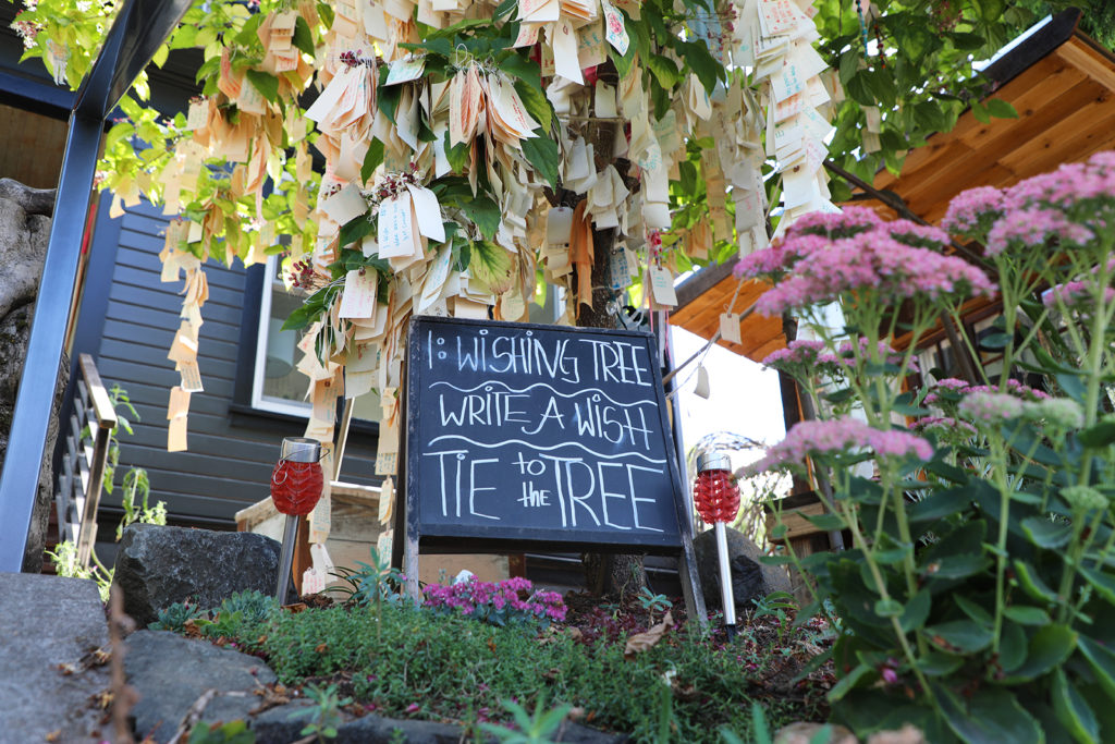 """paper notes are tied to a tree with a sign underneath saying """"wishing tree, write a wish tie to tree"""""""