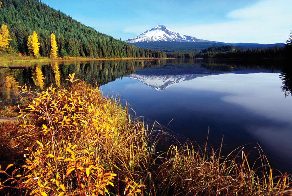 A snow-capped mountain is reflected in a lake with autumn foliage in the foreground